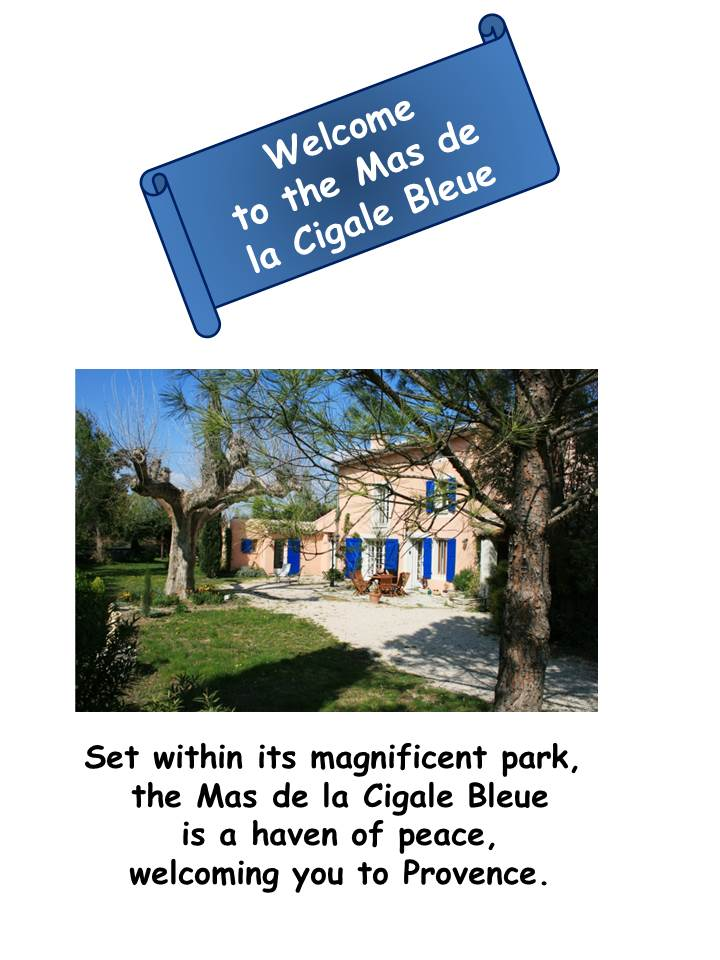 Blog Présentation Cigale bleue English Welcome1 43