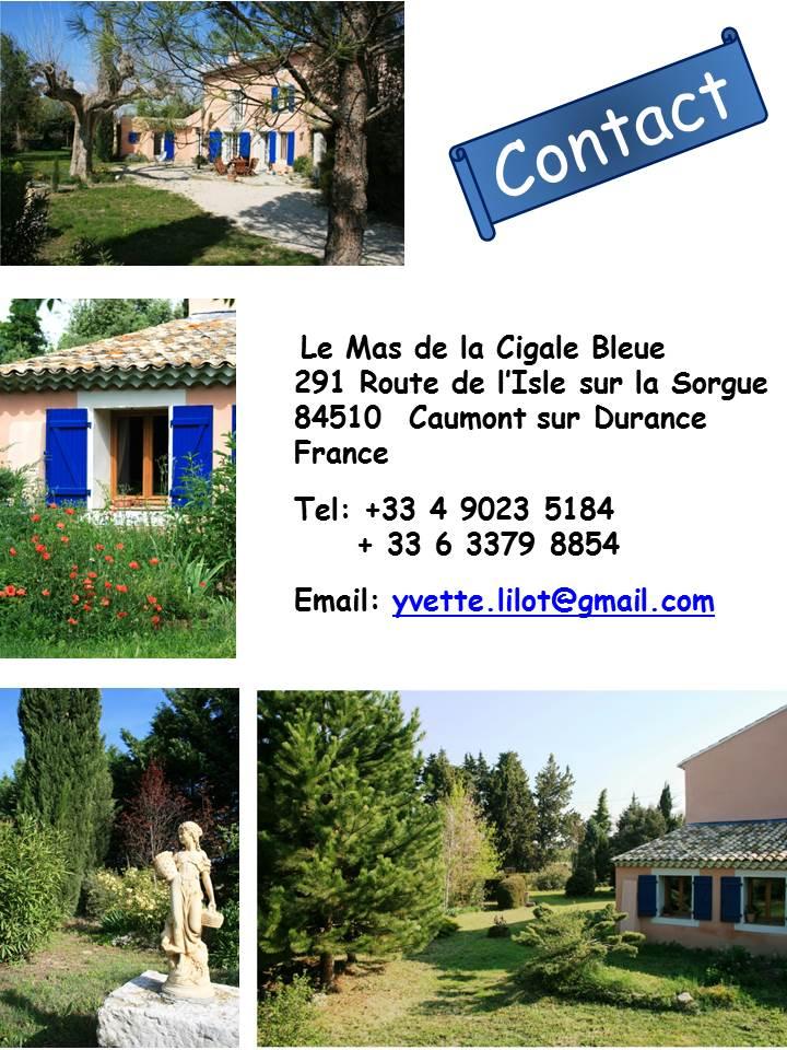 Blog Présentation Cigale bleue English contact 43