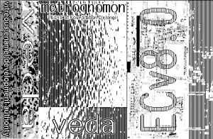 VEDA (2)